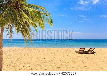 beds and umbrella on a tropical beach with coconut tree