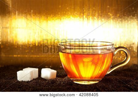 Cup of tea standing on dried leafs with lump sugar