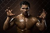 picture of felons  - the very muscular handsome felon guy out of netting steel fence - JPG