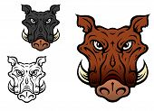 foto of wild hog  - Wild boar or hog in cartoon style for sports team mascot - JPG