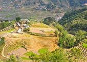 foto of hmong  - Rice Terraced Fields And Hmong Minority Village In Sapa - JPG