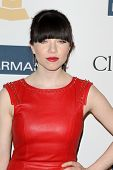 LOS ANGELES - FEB 9:  Carly Rae Jepsen arrives at the Clive Davis 2013 Pre-GRAMMY Gala at the Beverl