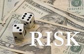 Financial Risk