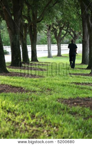 Father Strolling Under Trees Carrying Son
