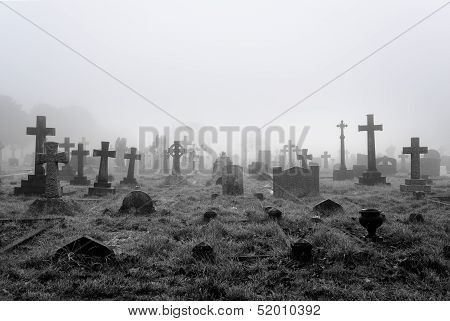 Foggy Cemetery Background