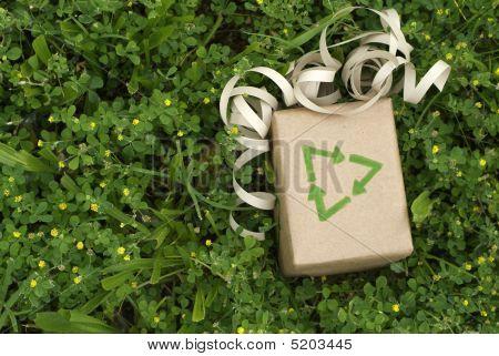 Presente ecológico