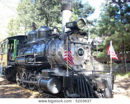 Historic 315 Steam Train
