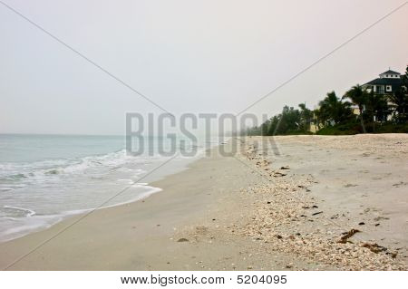 Sea Sand Sky And Trees On Florida Beach
