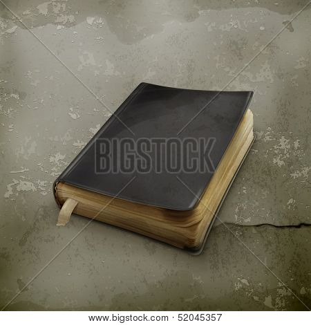 Book old style vector