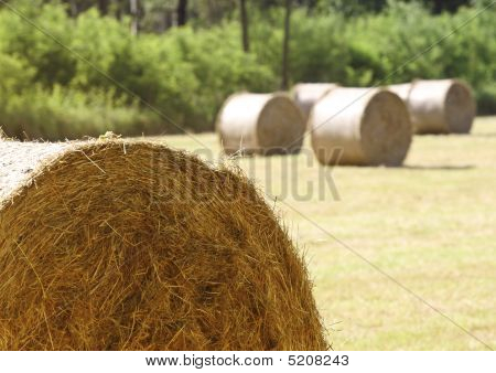Closeup Of Hay Bale