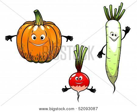 Radish, turnip and pumpkin vegetables