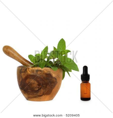 Chocolate Mint Herb Essence