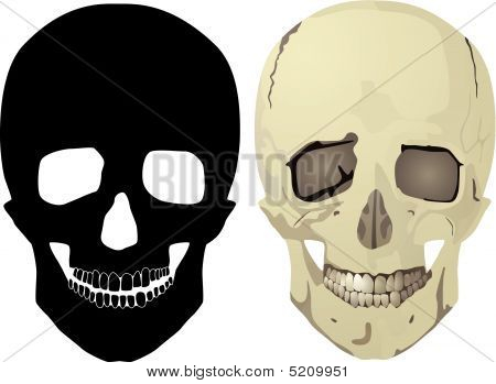 Black And Color Skull