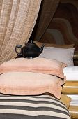 pic of futon  - Old tea pot on a pile of pillows - JPG