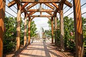 image of climbing roses  - A wood rose trellis over a brick sidewalk toward a fountain in a public garden - JPG