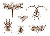 stock photo of dragonflies  - Insects in tribal ornamental style for tattoo design - JPG
