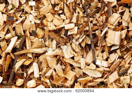 Background of freshly made yellow wood chips