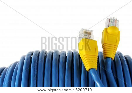 RJ45 Plug with Blue Network Cable