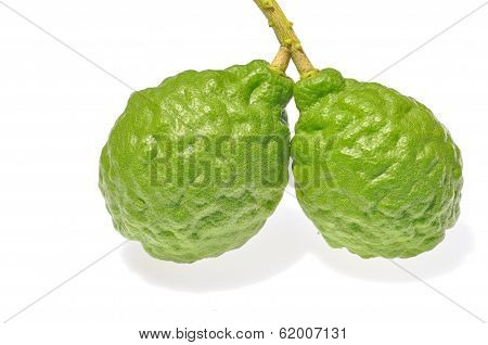 Three Leech Lime Fruits
