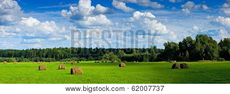 Panorama Of Field With Haystacks Under Clouds