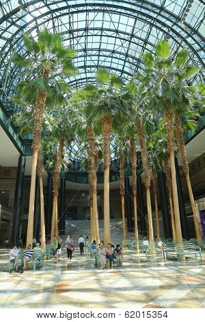 World Financial Center's Winter Garden
