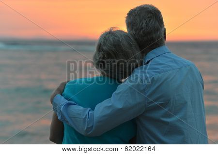 Senior couple looking a sea