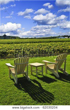 Muskoka chairs and table near vineyard under blue sky