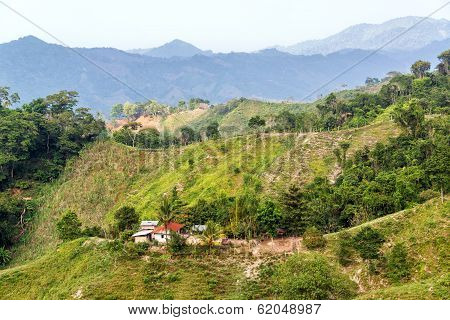 Green Hilly Landscape