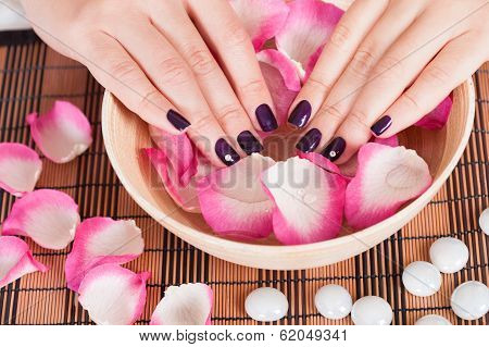Female Hands With Fashion Nails