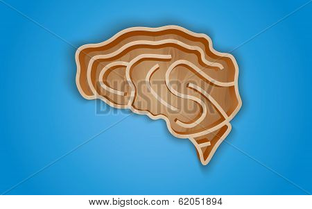 Wooden shelf in the form of the brain