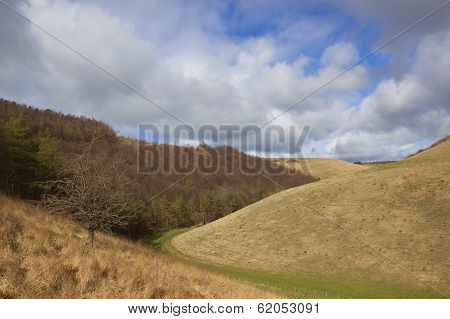 Yorkshire Wolds Hillsides