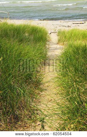 Entrance path to beach. Pinery provincial park, Ontario Canada