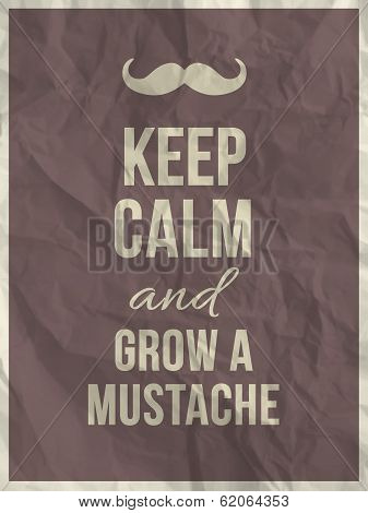 Keep Calm And Grow A Mustache Quote
