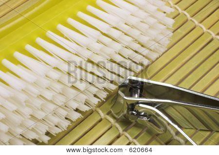 Nailbrush