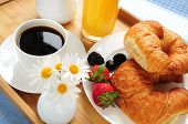 stock photo of continental food  - Breakfast served on a tray on a sunny morning - JPG