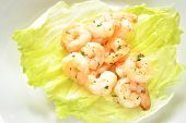 stock photo of butter-lettuce  - Appetising Shrimp Scampi on a Lettuce Leaf - JPG