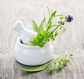 stock photo of purple sage  - Healing herbs in white ceramic mortar and pestle - JPG