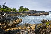 pic of pacific rim  - Rocky ocean shore in Pacific Rim National park - JPG