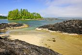 stock photo of pacific rim  - View from Long Beach in Pacific Rim National park - JPG