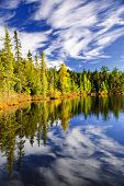 Evergreen forest and sky reflecting in calm lake at Algonquin Park, Canada