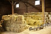 foto of food chain  - Interior of barn with hay bales stacks and conveyor belt - JPG