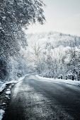 picture of icy road  - Icy winter road leading downhill through forest - JPG