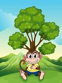 pic of frown  - Illustration of a monkey frowning under the tree at the hilltop - JPG
