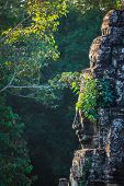 Ancient stone face of Bayon temple, Angkor, Cambodia with growing plants