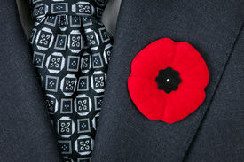 pic of lapel  - Red poppy lapel pin on suit jacket for Remembrance Day - JPG