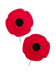 stock photo of lapel  - Two red poppy lapel pins for Remembrance Day - JPG