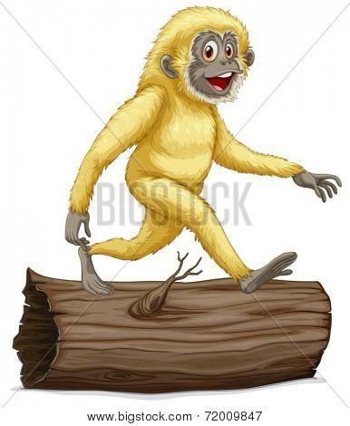 Illustration of a white gibbon on a log