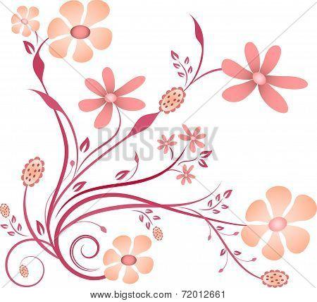Pink Flowers, Vector Flowers