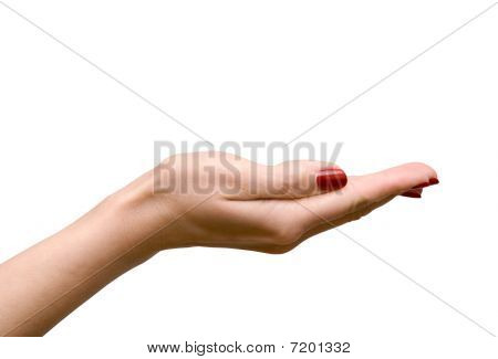 Empty woman's hand