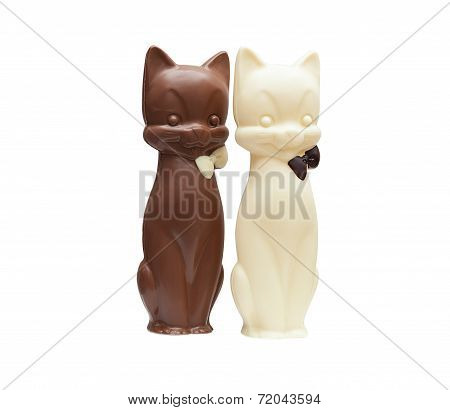 Image of two delicious chocolate cats